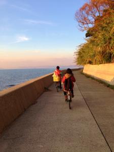 夕暮れ自転車